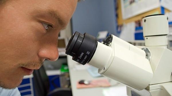 63歲癌症病人「早在19歲就有癌細胞」!哈佛追溯癌細胞突變時間表,提出驚人真相