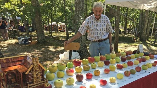 蘋果考古博士!79歲爺上山下海「找到幾千種蘋果」 創圖鑑大笑:還缺100多種