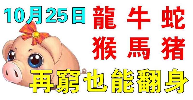 10月25日生肖運勢_龍、牛、豬大吉