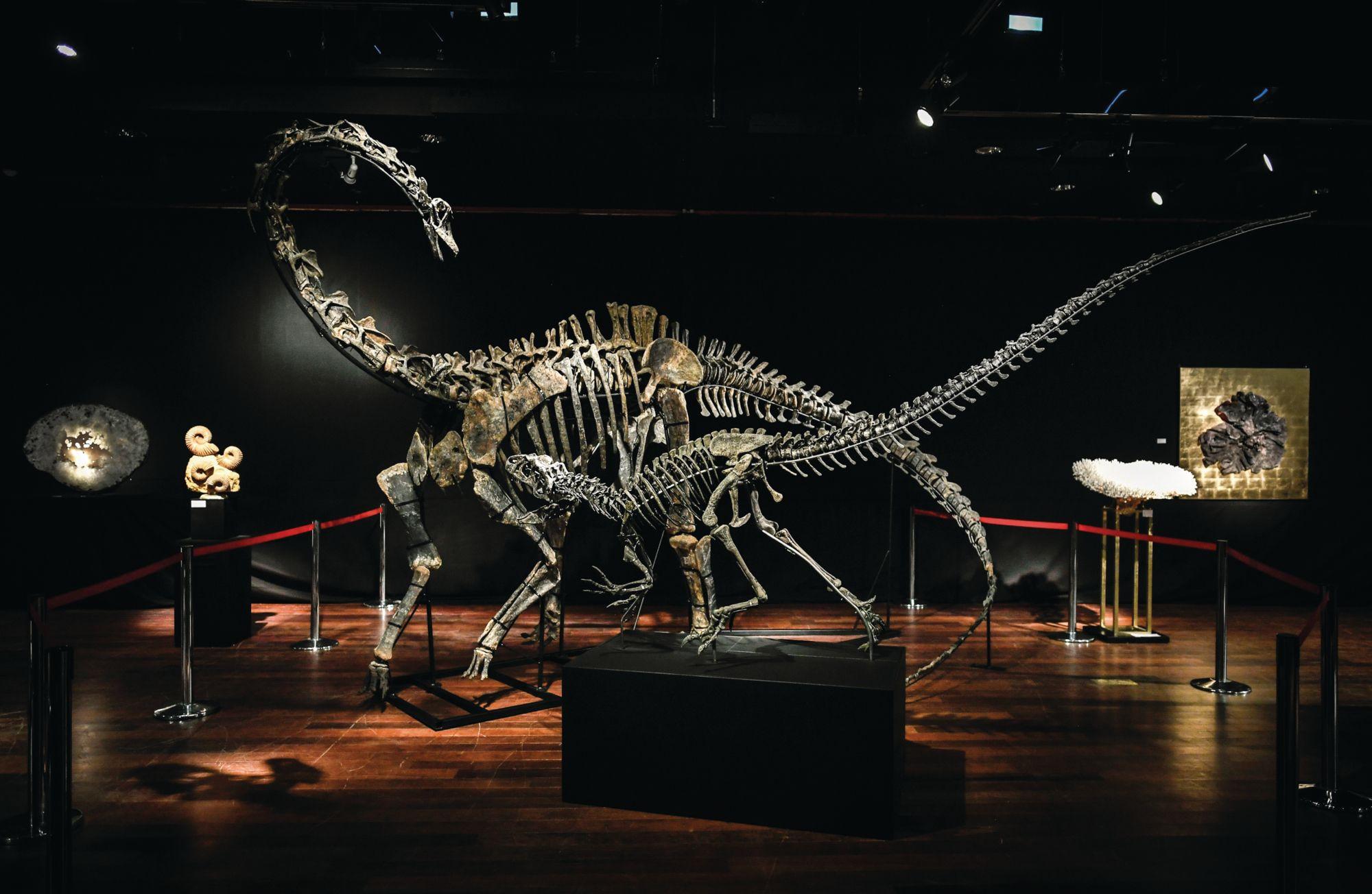 恐龍化石成收藏大勢!亞洲新一代「瘋狂亞洲富豪」家中擺放巨大恐龍展現驚人財力
