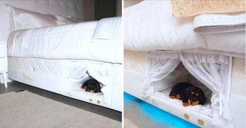 實現和汪汪一起睡~ 超猛床墊「自帶寵物床」還有公主風門簾❤