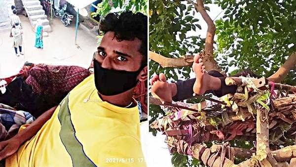 新冠陽性男「架床在樹上」自我隔離!離地三公尺遠離人群 10天後再驗變陰性