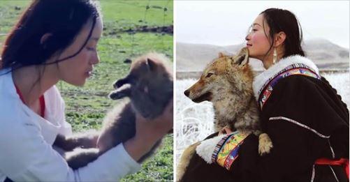 女子救活幼狼當親生孩子養 分離4年後重逢:「我們相見但不相親了」