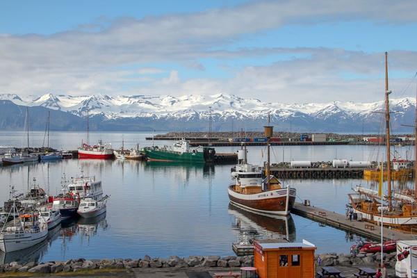 冰島「5級地震像喝水」周狂搖一萬八千多次 民眾看報導惶恐:快火山爆發