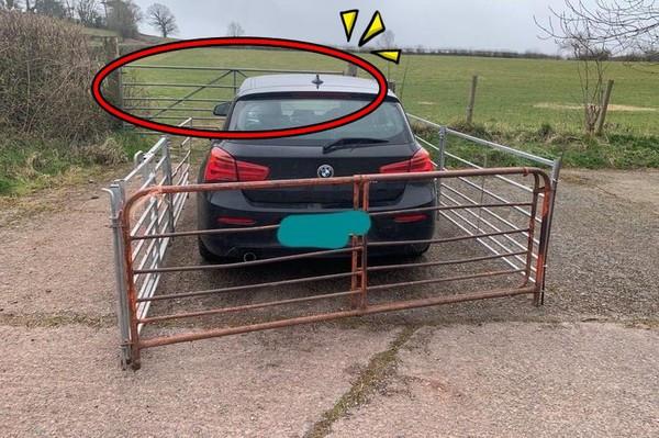 BMW直接停農場門口! 農爸爆氣「祭鐵牢深鎖」:車輛怎出入