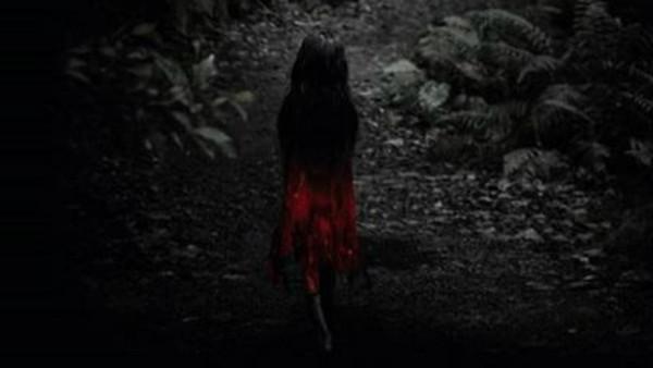 台灣最出名「紅衣小女孩」 拿清晰V8影像找目擊者 結果不只一位